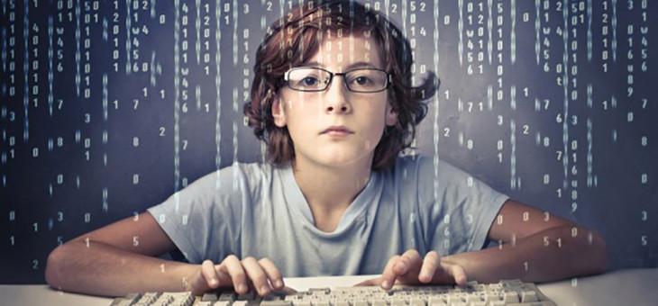 Web programer